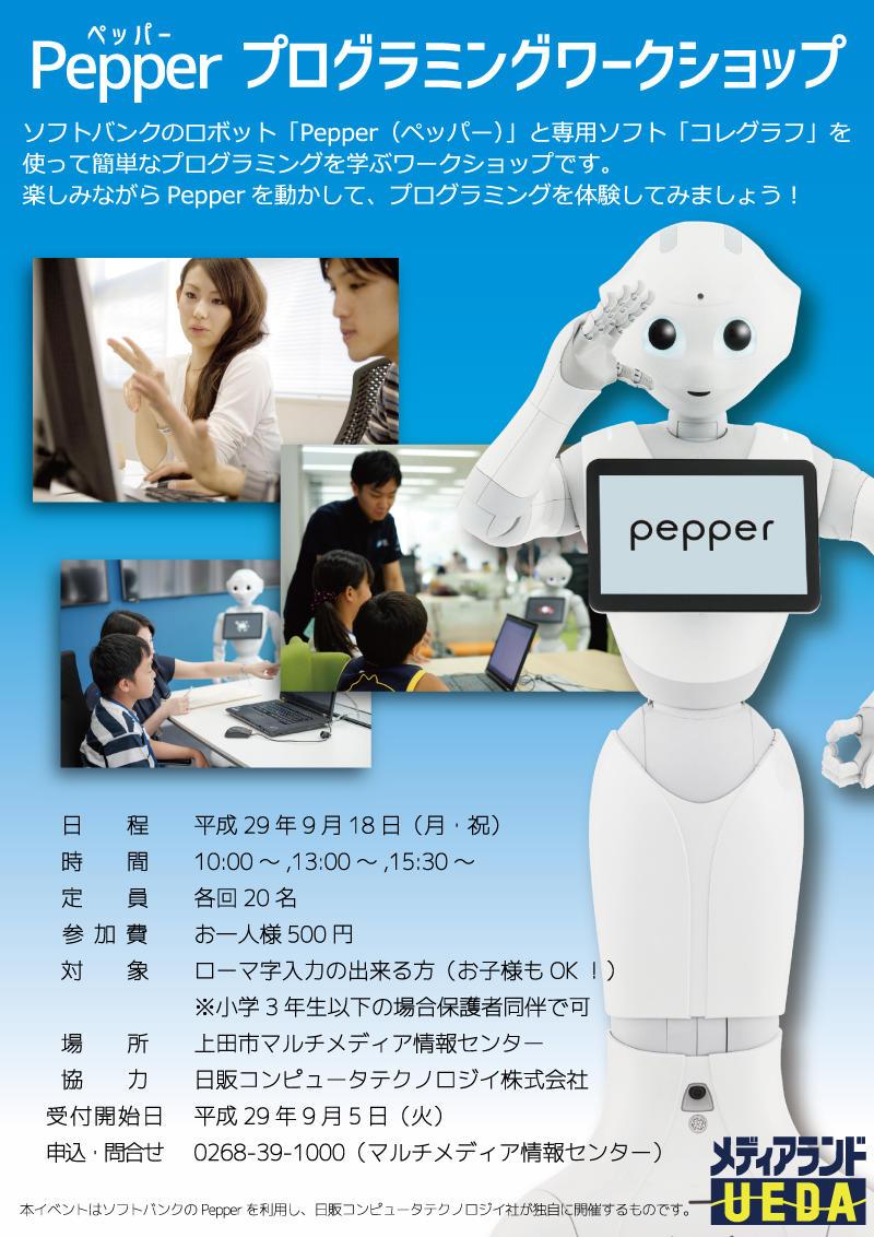 pepperworkshop.jpg
