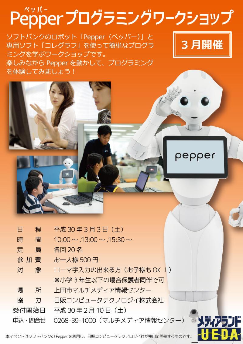 Pepperプログラミングワークショップチラシ画像